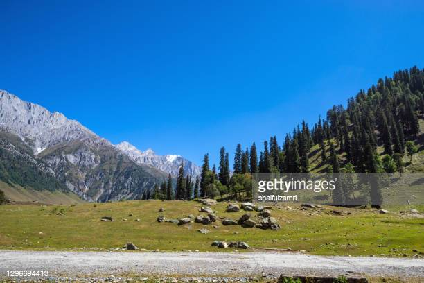 beautiful mountain landscape of sonamarg, jammu and kashmi - shaifulzamri stock pictures, royalty-free photos & images