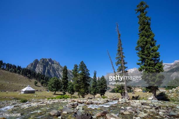 beautiful mountain landscape of sonamarg, jammu and kashmir. - shaifulzamri stock pictures, royalty-free photos & images