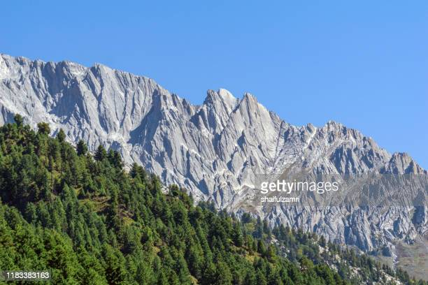 beautiful mountain landscape of sonamarg, jammu and kashmir state, india. - shaifulzamri stock pictures, royalty-free photos & images