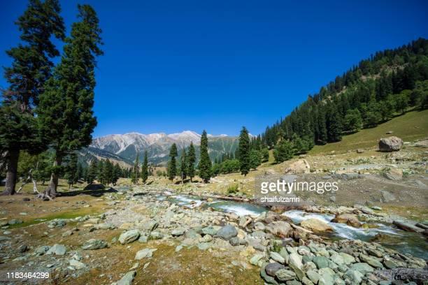 beautiful mountain landscape of sonamarg, jammu and kashmir state, india. - shaifulzamri stock-fotos und bilder