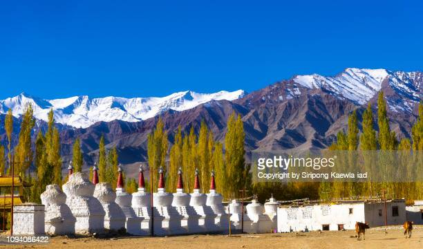 beautiful mountain landscape with the row of stupas in foreground at the thiksey monastery, leh, india. - tibetaanse cultuur stockfoto's en -beelden