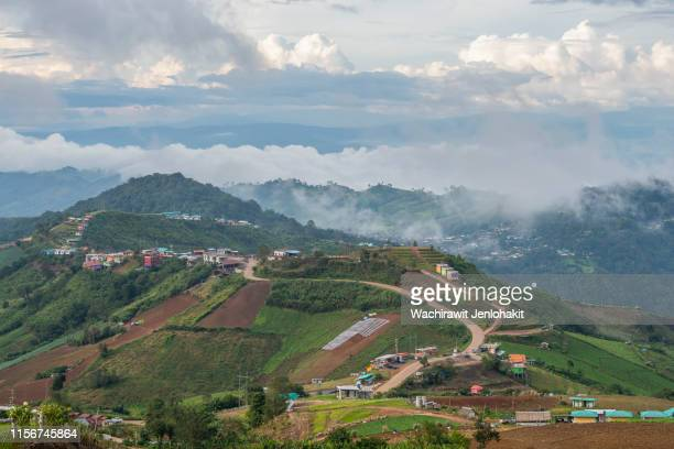 beautiful mountain views on phu thap boek, thailand. - boek stock pictures, royalty-free photos & images