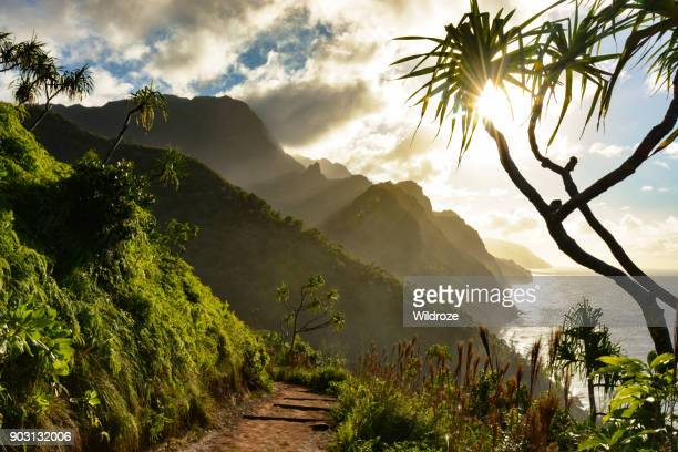 beautiful na pali coast sunset from the kalalau trail on kauai's north shore - perfection stock pictures, royalty-free photos & images