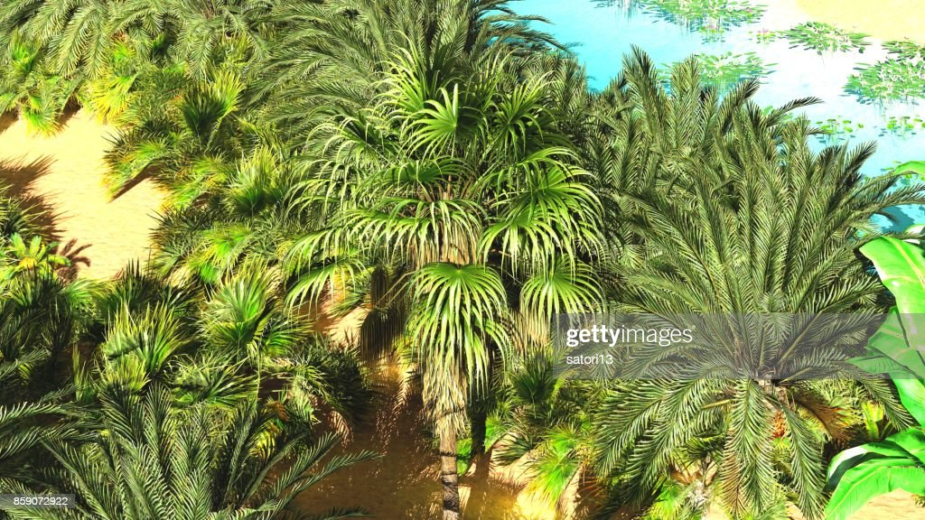 Beautiful Natural Background African Oasis 3d Rendering High Res