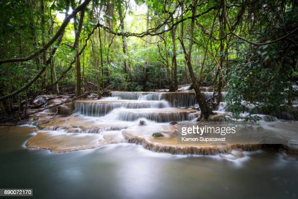 Beautiful nature of waterfall in the forest