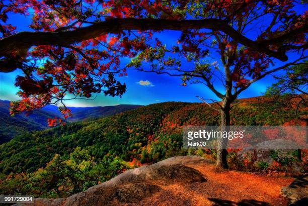 beautiful nature - utc−10:00 stock pictures, royalty-free photos & images