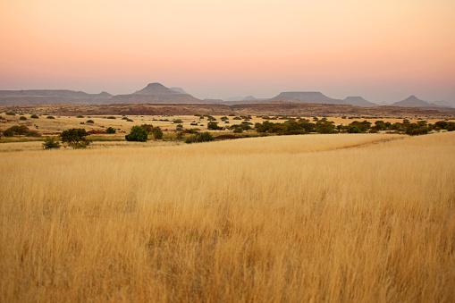 Beautiful Northern Namibian Savannah Landscape at Sunset 493582984