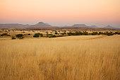Beautiful Northern Namibian Savannah Landscape at Sunset