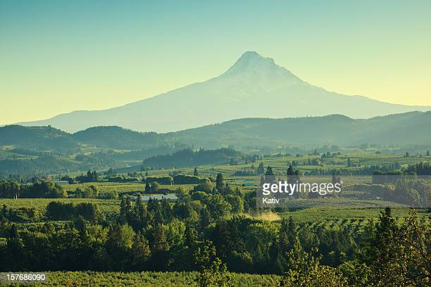 beautiful oregon scenery - hood river valley stock photos and pictures