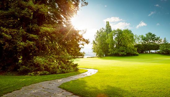 Beautiful panorama of green city park at dawn 627585412