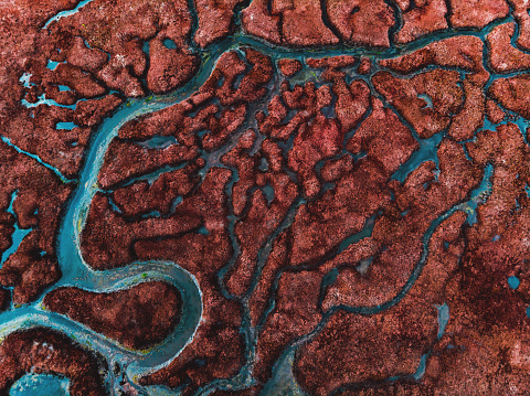 Beautiful pattern created by river delta taken from above. - gettyimageskorea