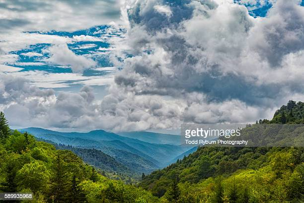 beautiful - north carolina stock pictures, royalty-free photos & images