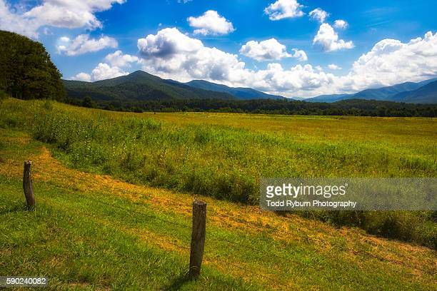 beautiful - cades cove stock pictures, royalty-free photos & images