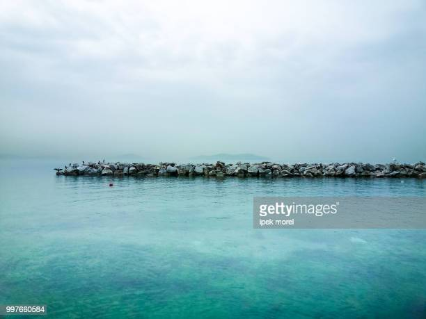 beautiful pier with birds, sky and sea - ipek morel stock pictures, royalty-free photos & images