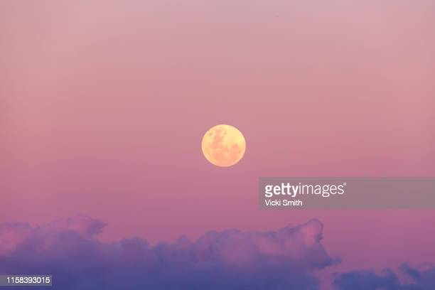 beautiful pink and purple full moon rise at sunset - pleine lune photos et images de collection