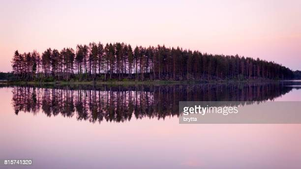 beautiful pink sunrise over the lake  in gastrikland,sweden - reflection lake stock photos and pictures