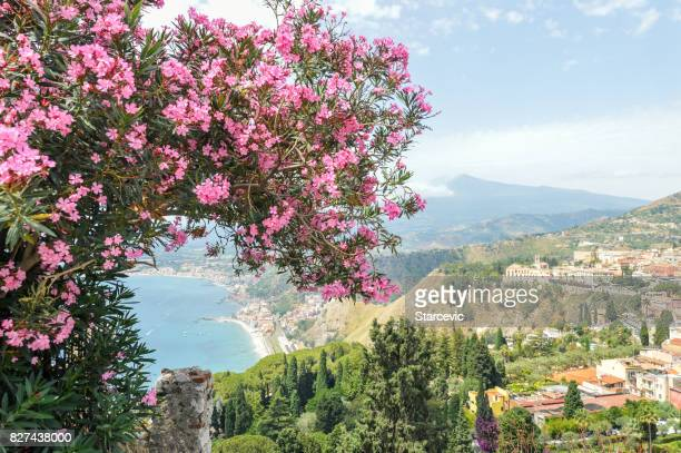 beautiful postcard view with flowers over taormina, sicily - catania stock photos and pictures