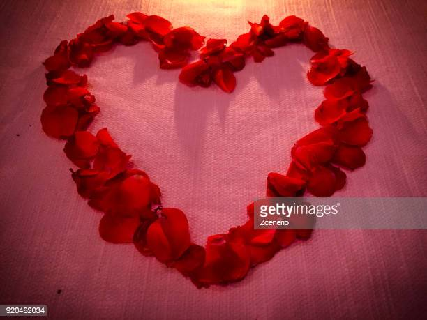 beautiful red rose petals heart shape collection - saint valentin stock pictures, royalty-free photos & images
