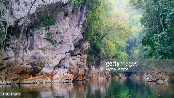 beautiful river at the rainforest in guatemala - guatemala stock pictures, royalty-free photos & images