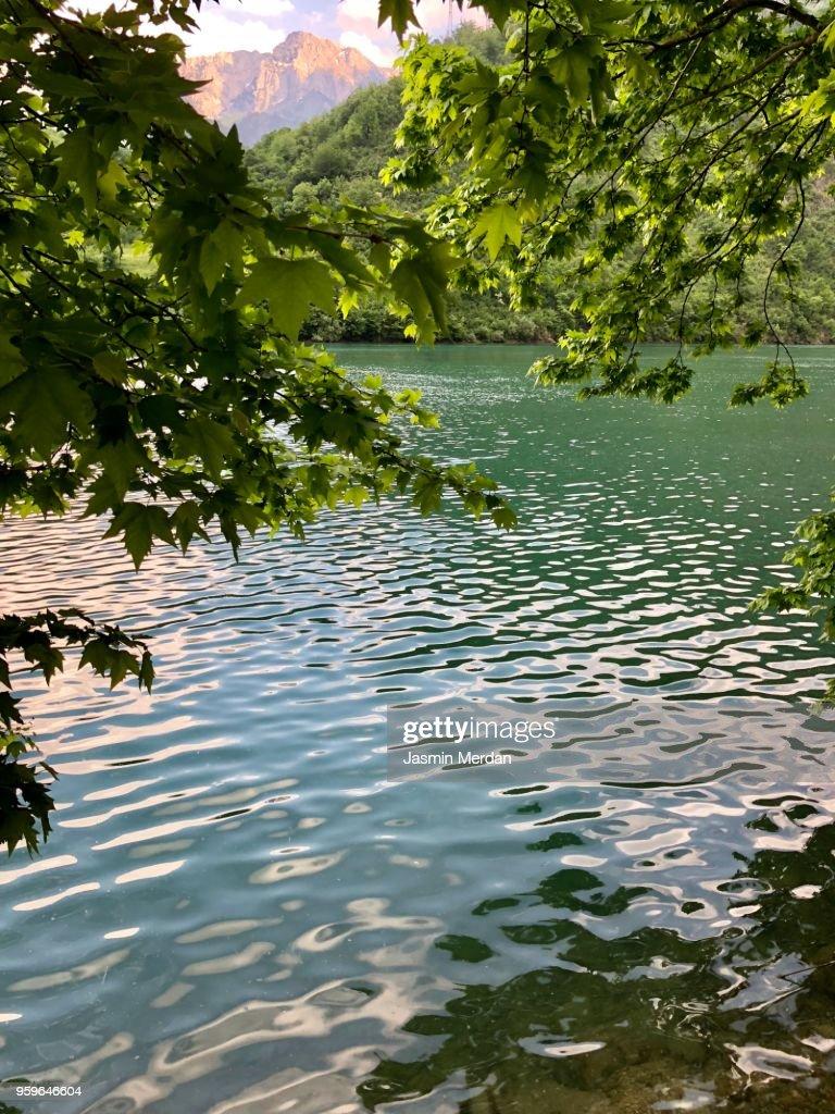 Beautiful river : Stock Photo