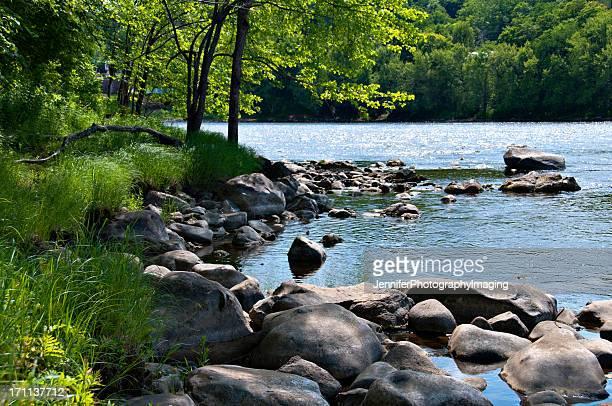 Beautiful Riverbank