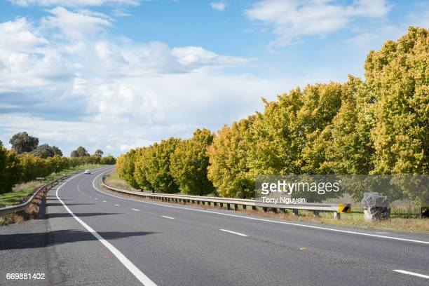 beautiful road in autumn in the regional area of australia. - roadside stock pictures, royalty-free photos & images