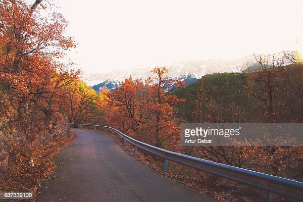 beautiful road with autumn colored leaves trees in the catalan pyrenees mountains with snowy mountain range on the background in stunning landscape. - territory stock pictures, royalty-free photos & images