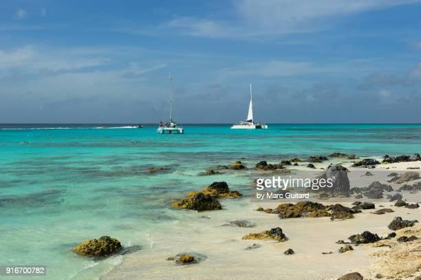beautiful rocky beach at catalina cove, aruba - catamaran stock photos and pictures