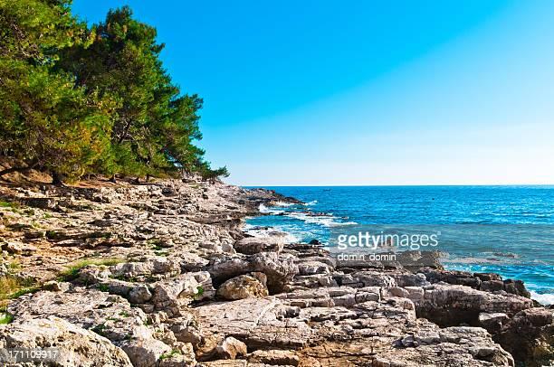 美しい天然岩の海岸線にあるプラ zlate stijene 近く、istria ,クロアチア - イストリア半島 プーラ ストックフォトと画像