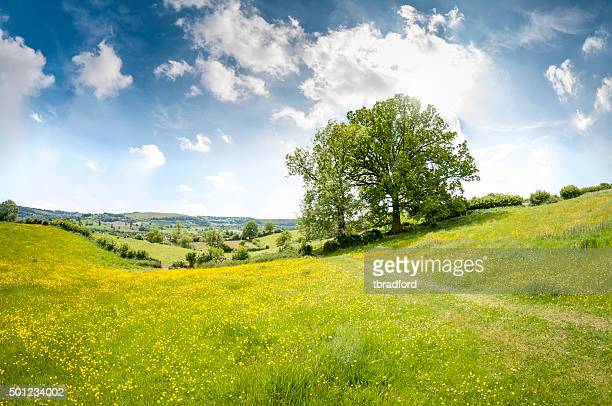 beautiful rolling landscape on a summers day in the cotswolds - landscape scenery stock photos and pictures