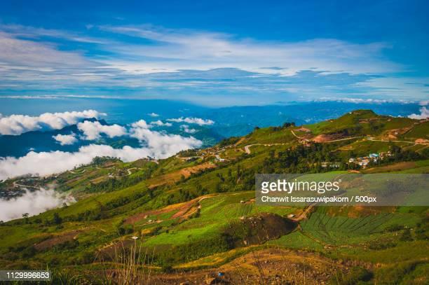 beautiful romantic road nature and landscape in national park name phu-thap boek, thailand - boek stock-fotos und bilder