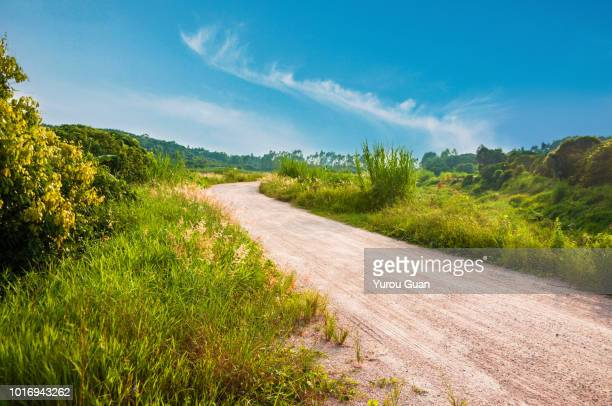 beautiful rural scenery: dirt road in the hill. - 丘 ストックフォトと画像