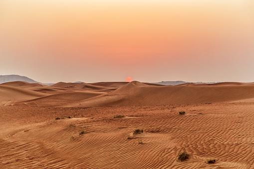 Beautiful sand dunes in the desert. 909462746