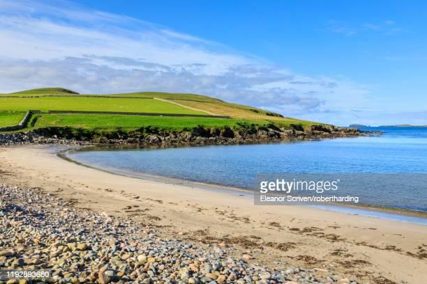 beautiful sandwick beach, green hills and cliffs of ness of hillswick, northmavine, shetland isles, scotland, united kingdom, europe - isole shetland foto e immagini stock