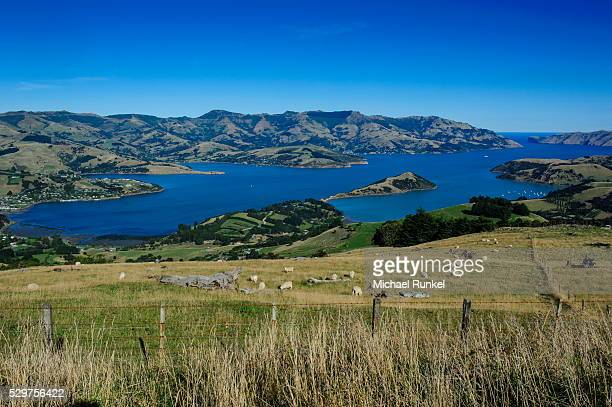 Beautiful scenery around Akaroa harbour, Banks Peninsula, Canterbury, South Island, New Zealand, Pacific