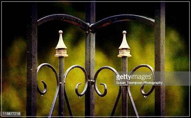 beautiful scrolled gate - scrollen stock pictures, royalty-free photos & images