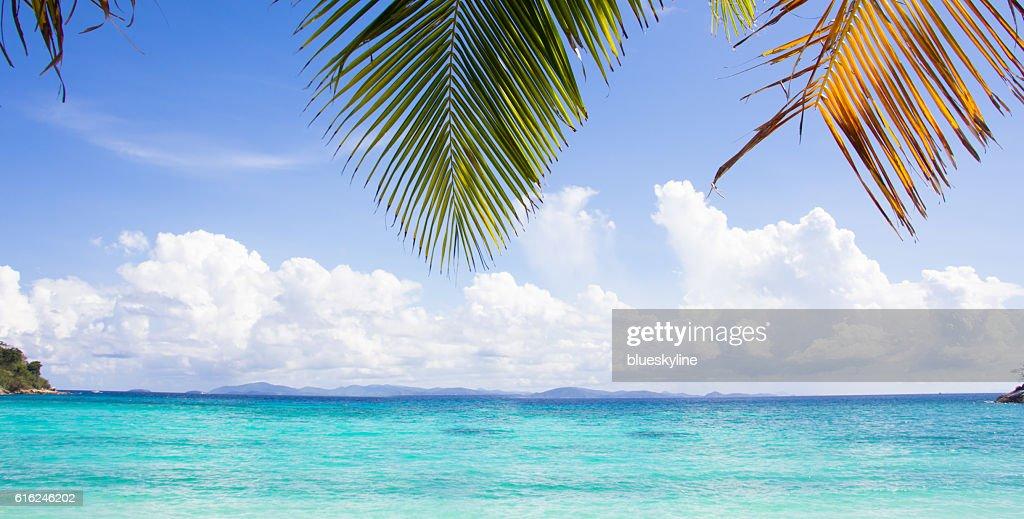 Beautiful sea : Stock Photo