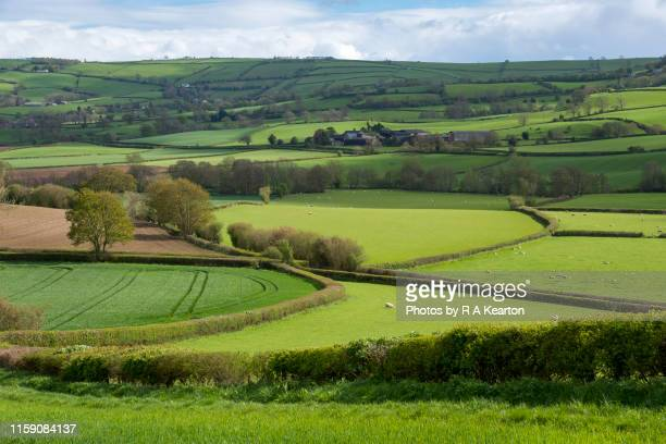 beautiful shropshire countryside on a sunny spring day - english culture stock pictures, royalty-free photos & images