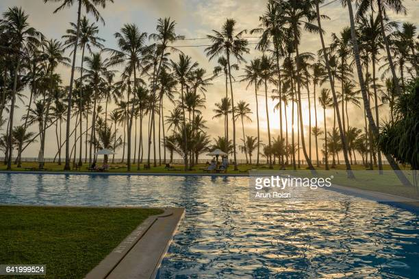 Beautiful Silhouette palm tree with umbrella and chair around luxury swimming pool in hotel resort at sunset time, Sri Lanka