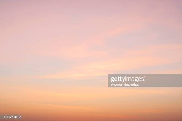 beautiful sky of pink clouds in sky at sunset springtime - tramonto foto e immagini stock