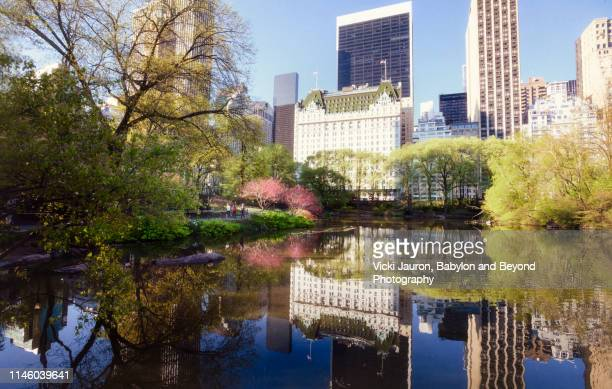 beautiful spring view of duck pond and 59th street buildings in new york city - hotel plaza manhattan stock-fotos und bilder
