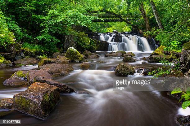 Beautiful stream of Sweden
