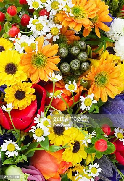 Beautiful studio photo of fresh flowers colorfully arranged