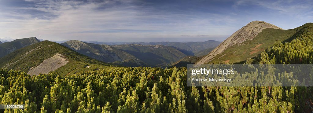 Beautiful summer landscape in the mountains : Stock Photo