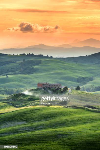beautiful summer landscape in tuscany, italy. - tuscany stock pictures, royalty-free photos & images