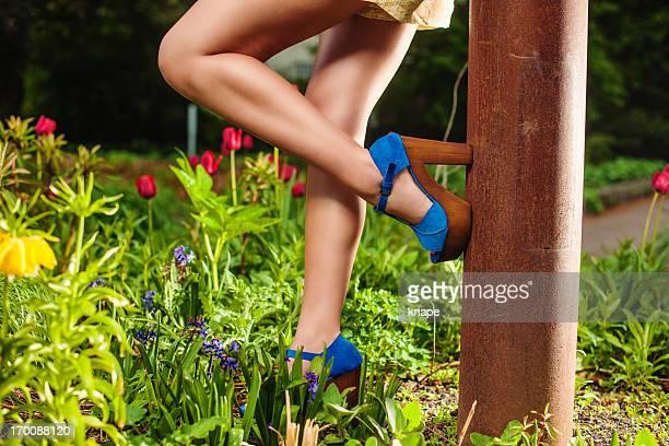 Beautiful summer legs