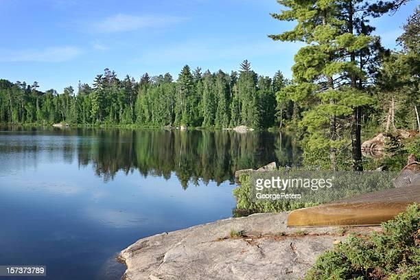美しい夏の朝の自然の湖
