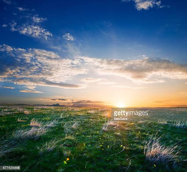 Magnifique lever de soleil de l'été