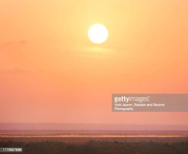 beautiful sun rising over landscape at amboseli, kenya - bruma de calor fotografías e imágenes de stock