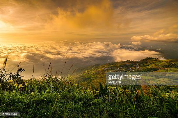 beautiful sunrise and fog at phu thap boek - boek stock pictures, royalty-free photos & images